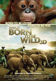 Born To Be Wild (imax)