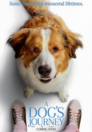 A DOGS JOURNEY  - 2019