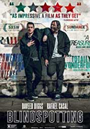 Blindspotting [2d]